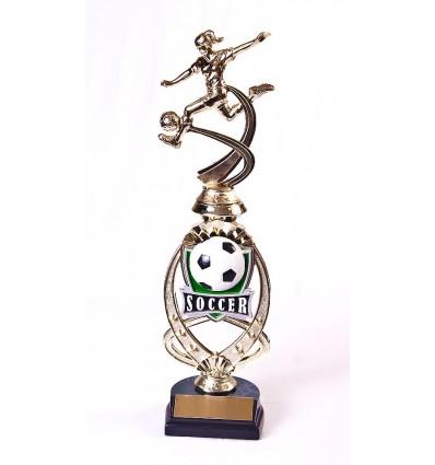 LTPIIBK311 - Meridian Soccer